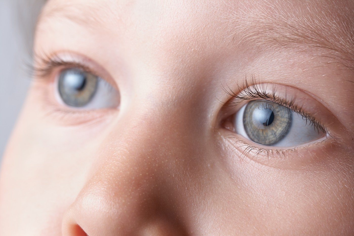 Eye Growth Mechanism Resembles the Penny Pusher Game